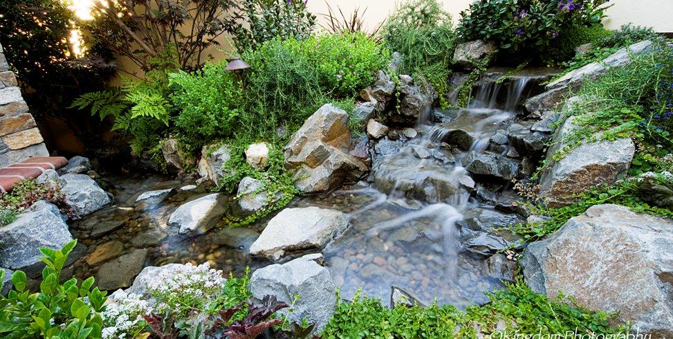 Naturalistic Backyard Creek Lifescape Designs Simi Valley, CA