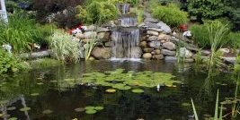 Koi Pond Neave Group Outdoor Solutions Wappingers Falls, NY