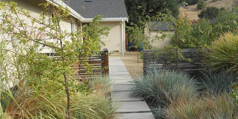Paver Path Concrete Walkway Huettl Landscape Architecture Walnut Creek, CA