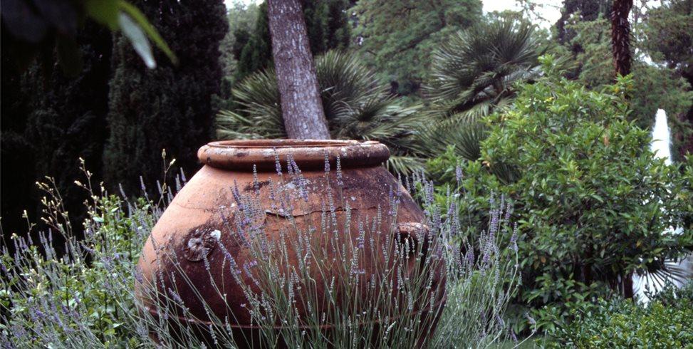 Garden Urn Mediterranean Landscaping Maureen Gilmer Morongo Valley, CA
