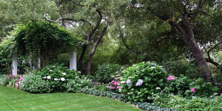 Victorian, Shrubs Northern California Landscaping Donna Lynn Landscape Design Santa Barbara, CA