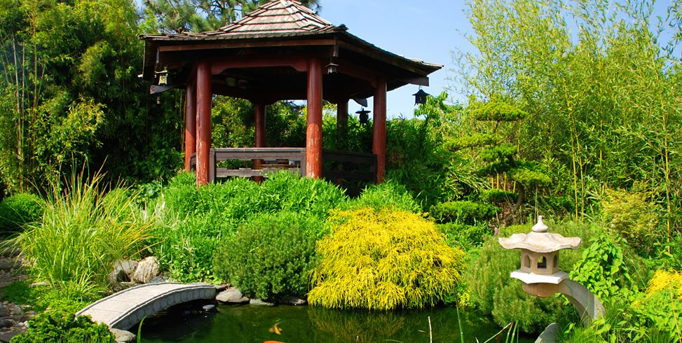 koi pond design maintenance landscaping network. Black Bedroom Furniture Sets. Home Design Ideas