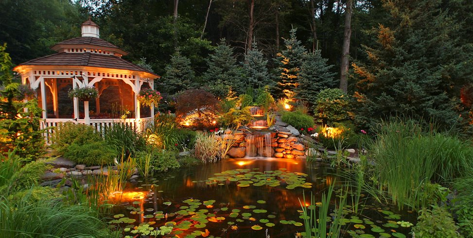 Koi pond design maintenance landscaping network for Koi fish pond garden design ideas