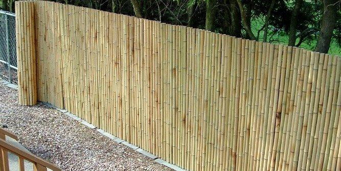 Bamboo, Fence, Roll Bamboo Fencer Cambridge, MA