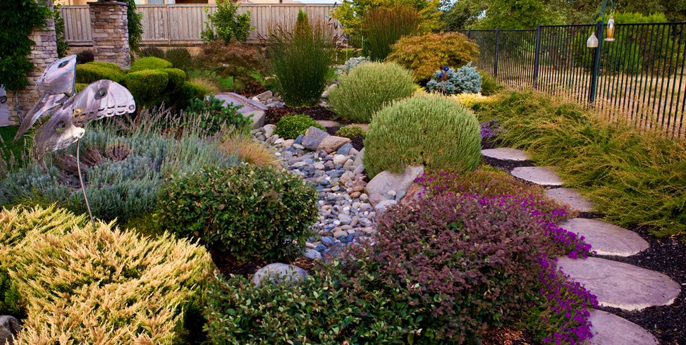 Dry Stream Bed, Drought Tolerant Landscape Simple Elegance Rocklin, CA