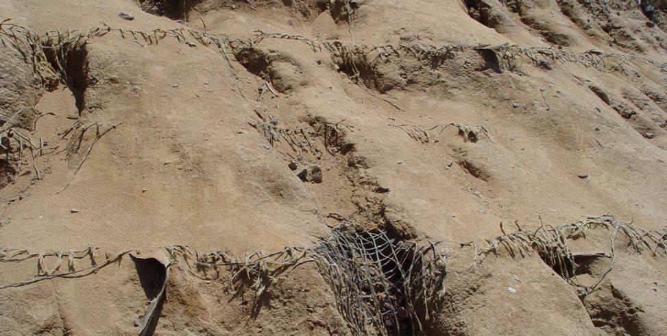 Erosion Control Mesh Maureen Gilmer Morongo Valley, CA