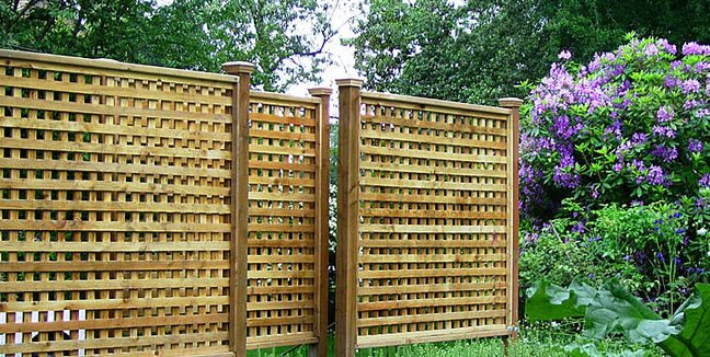 Lattice Fence Paradise Restored Landscaping Portland, OR