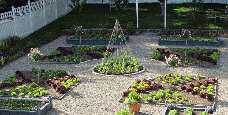 Backyard Vegetable Gardens - Landscaping Network