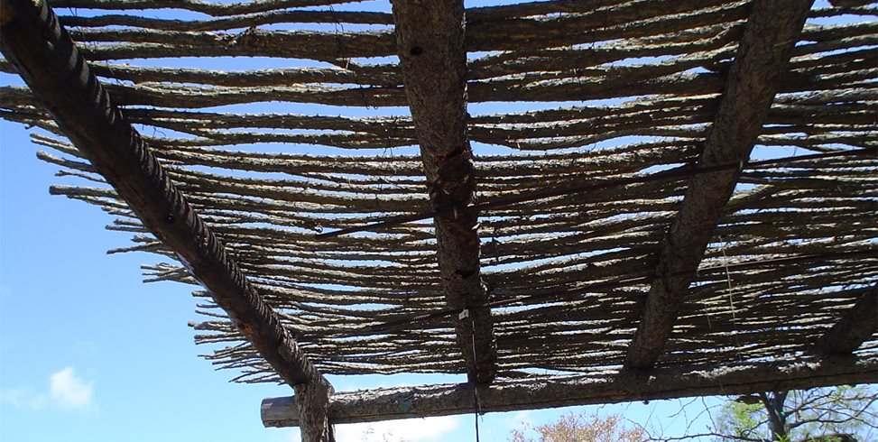 Rustic Shade Arbor Maureen Gilmer Morongo Valley, CA