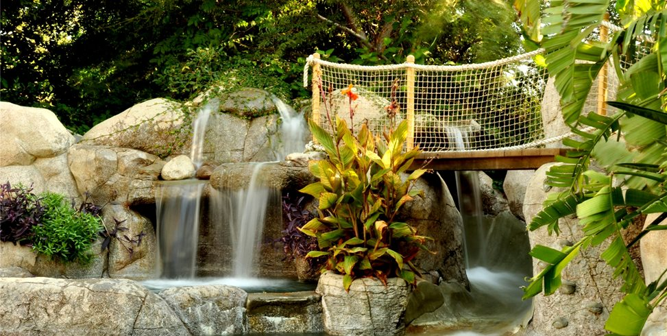 Swimming pool features landscaping network for Garden state pool scene quote