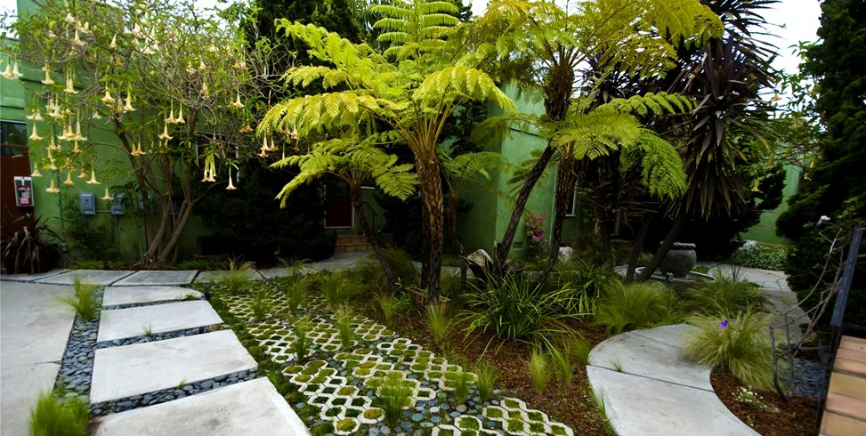 Eco Friendly Landscape Design Landscaping Network