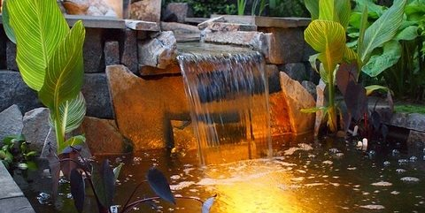 Pond Lighting Ideas Landscaping Network