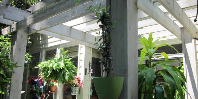 Clinger Clip, Plant Bracket Stratton Pritchard Marketing, Inc. Atlanta, GA