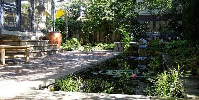 Water Feature, Plunge Pool, Bali Garden Design Switzer's Nursery and Landscaping Northfield, MN