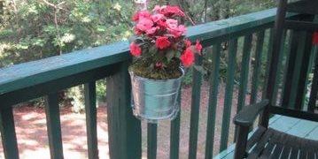 Clinger Clip, Mounted Plant Stratton Pritchard Marketing, Inc. Atlanta, GA