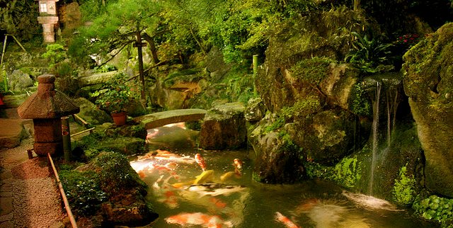 Koi Pond, Asian, Lantern, Moss Swimming Pool Zoen Sekkei-sha + Associates Lake Forest, IL