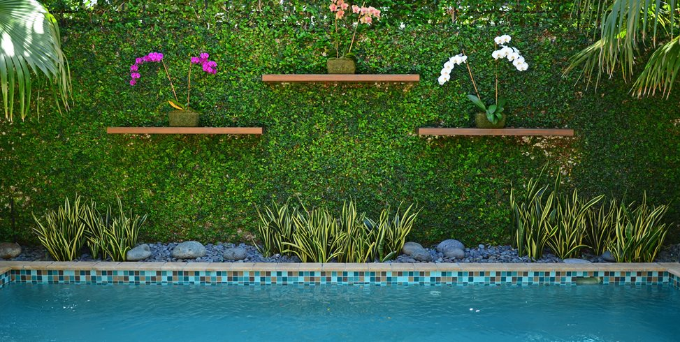 Tropical Wall, Living Wall, Vine Wall Tropical Landscaping Lewis Aqui Landscape + Architectural Design, LLC. Miami, FL