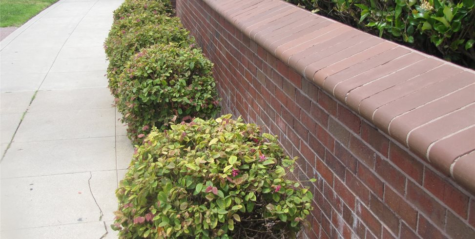 Brick, Retaining Wall Retaining and Landscape Wall Landscaping Network Calimesa, CA