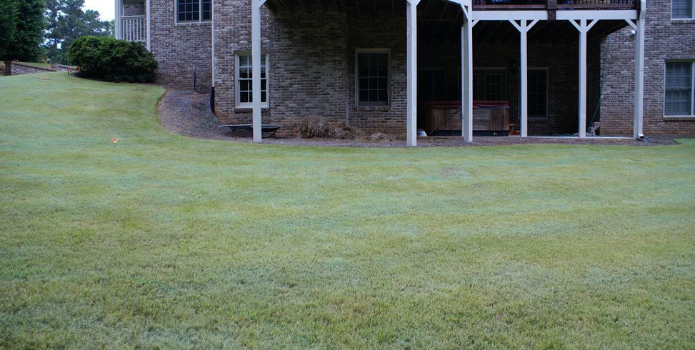 Canton Backyard Before, Before Picture Miller Landscape Woodstock, GA