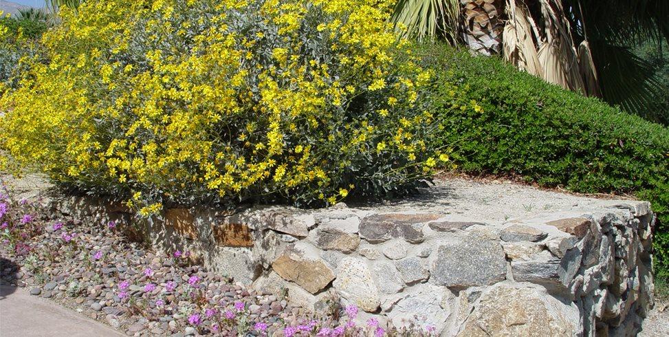 Gravel Maureen Gilmer Morongo Valley, CA
