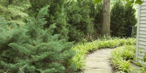 Townhouse landscaping landscaping network for Westover landscape design
