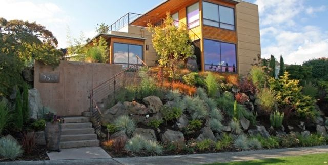 Front Yard Hillside Front Yard Landscaping Banyon Tree Design Studio Seattle, WA