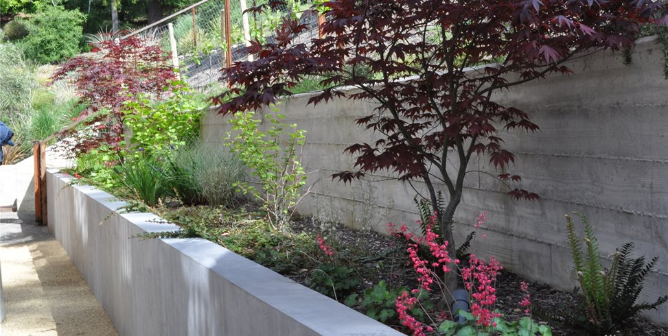 Side Yard, Seat Wall Retaining and Landscape Wall Huettl Landscape Architecture Walnut Creek, CA