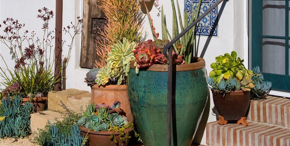 Pot Grouping Grace Design Associates Santa Barbara, CA