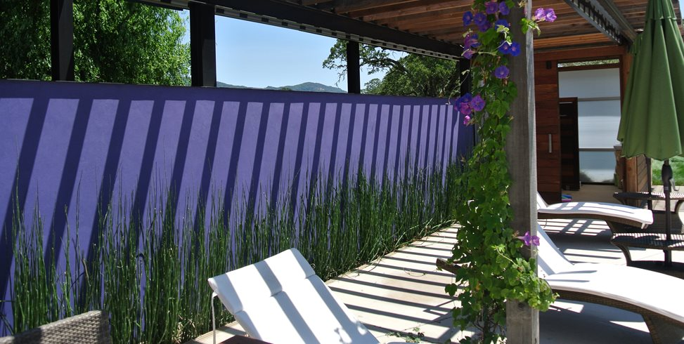 Purple Wall, Horsetail Reeds Shades of Green Landscape Architecture Sausalito, CA